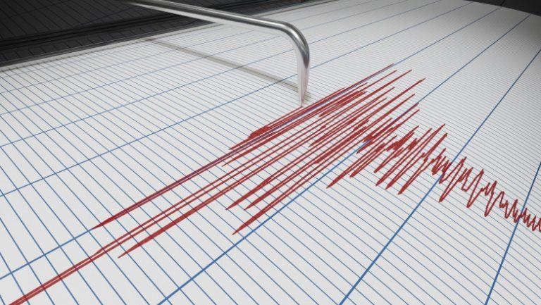 Trei cutremure în această noapte, unul în Argeș
