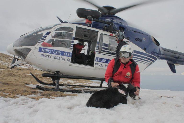Unitățile canine ale Salvamont – stagiu de formare în Făgăraș
